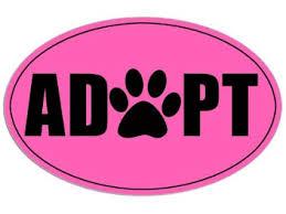 adopt pink emblem