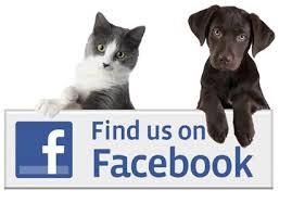 facebookdogandcat