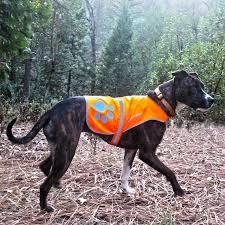 orange vest 1