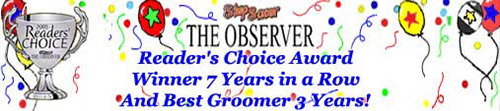 Stepsaver/Observer Reader's Choice Award Winner