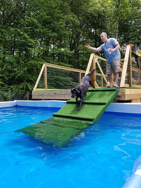 Wagging Tails LLC | Wolcott, West Hartford CT | Pet Care, Resort